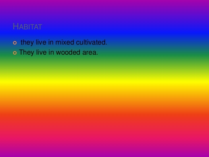 Habitat<br /> they live in mixed cultivated.<br />They live in wooded area.<br />