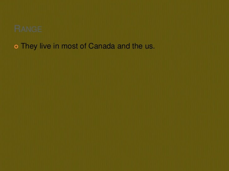Range<br />They live in most of Canada and the us.<br />