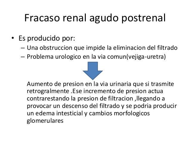 Fracaso renal agudo postrenal• Es producido por:  – Una obstruccion que impide la eliminacion del filtrado  – Problema uro...
