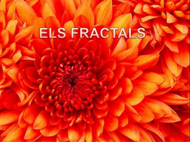 Què és un fractal ?unfractal ?Un fractal és una formarepetida vàries vegades. Larosa és un fractal.