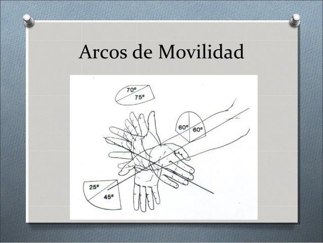 Presentación Clínica O Dolor O Deformidad mínima O Tumefacción O Crepitación mínima O Limitación a los arcos de movilidad ...