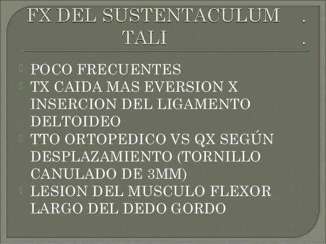 3 PORCIONES : CABEZA, CUERPO Y CUELLO. 6 CARAS 3 ARTICULACIONES : TOBILLO CON TIBIA Y PERONE, ASTRAGALOESCAFOID EA (JUNTO ...