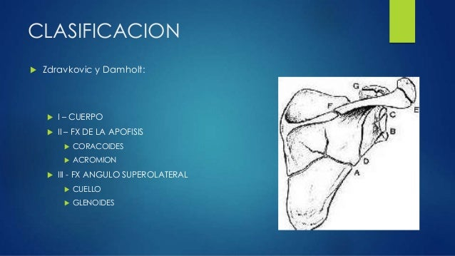 ... la coracoides TAC plano trabsversal  9. a9e8b0247703