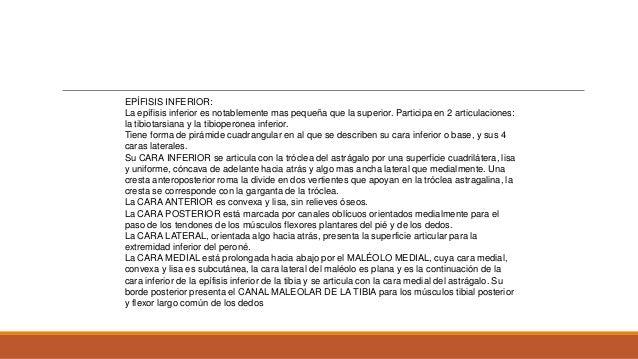 MECANISMO DE LESION TRAUMATICO DIRECTO INDIRECTO : ( TORSION CON BLOQUEO DEL PIE ) Alta energía Baja energía