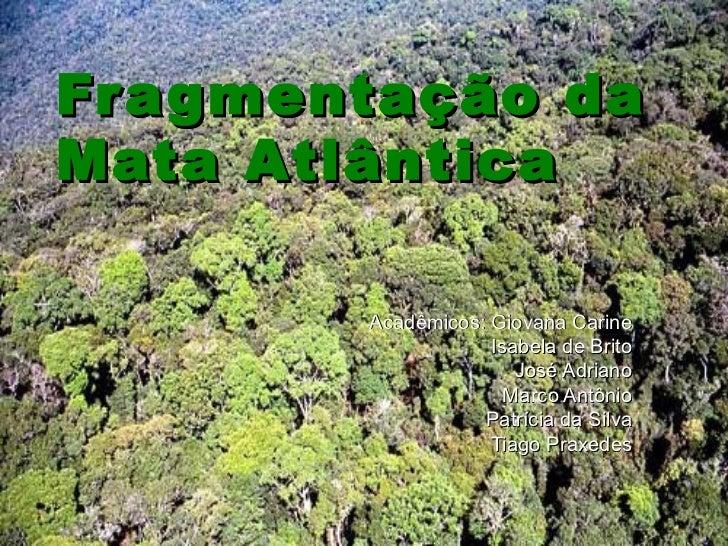 Fragmentação da Mata Atlântica Acadêmicos: Giovana Carine Isabela de Brito José Adriano Marco Antônio Patrícia da Silva Ti...