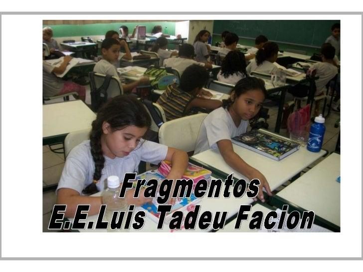 Fragmentos E.E.Luis Tadeu Facion