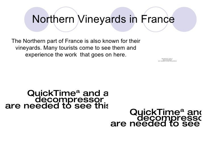 Northern Vineyards in France The Northern part of France is also known for their vineyards. Many tourists come to see them...