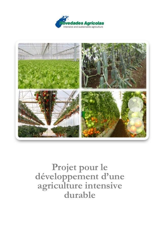 Projet pour ledéveloppement d'uneagriculture intensive      durable