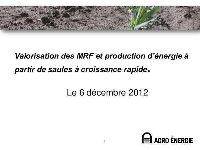 Valorisation des MRF et production d'énergie àpartir de saules à croissance rapide.              Le 6 décembre 2012       ...