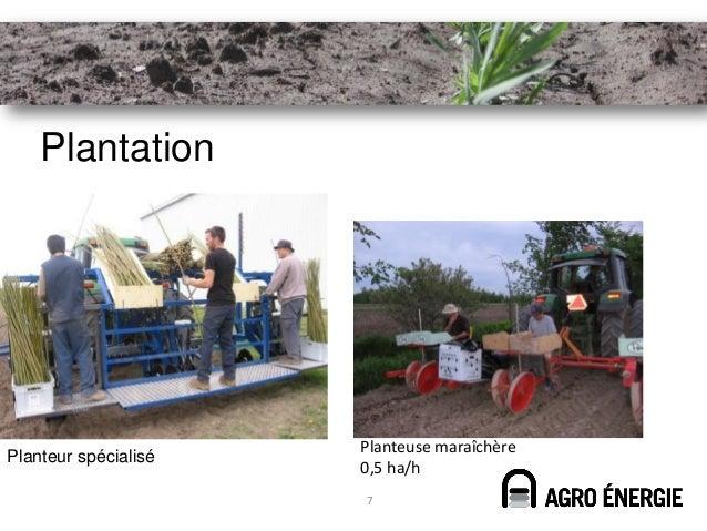 Plantation                      Planteuse maraîchèrePlanteur spécialisé                      0,5 ha/h                      7