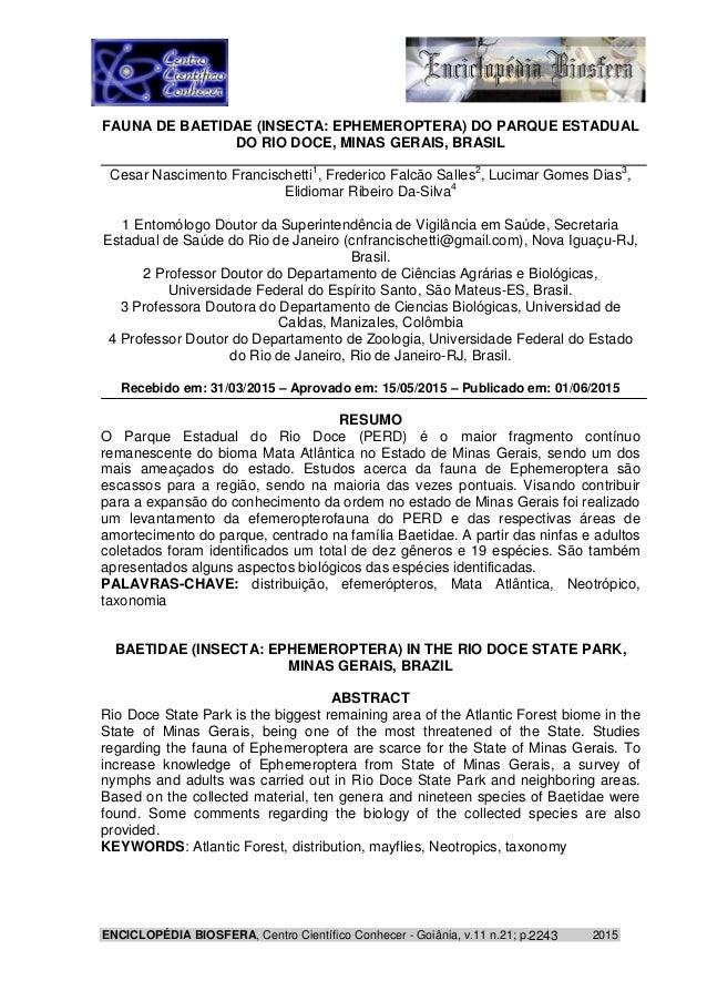 ENCICLOPÉDIA BIOSFERA, Centro Científico Conhecer - Goiânia, v.11 n.21; p. 20152243 FAUNA DE BAETIDAE (INSECTA: EPHEMEROPT...
