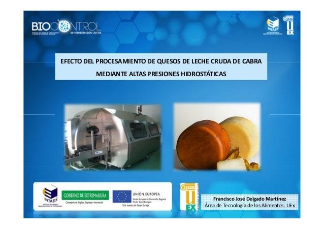 Francisco José Delgado Martínez Área de Tecnología de los Alimentos. UEx EFECTO DEL PROCESAMIENTO DE QUESOS DE LECHE CRUDA...