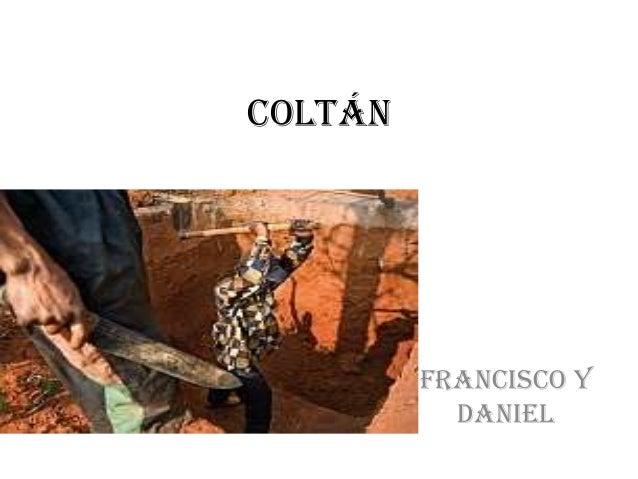 COLTÁN         FRANCISCO Y           DANIEL