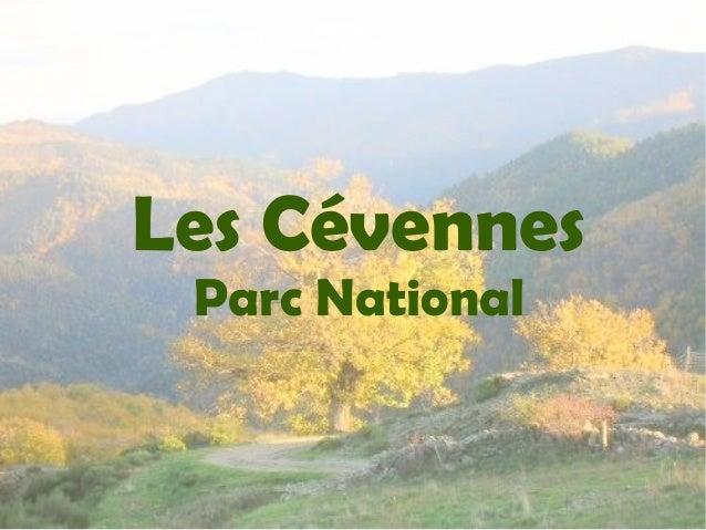 Les Cévennes Parc National