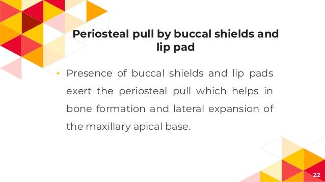 Periosteal pull by buccal shields and lip pad ◂ Presence of buccal shields and lip pads exert the periosteal pull which he...