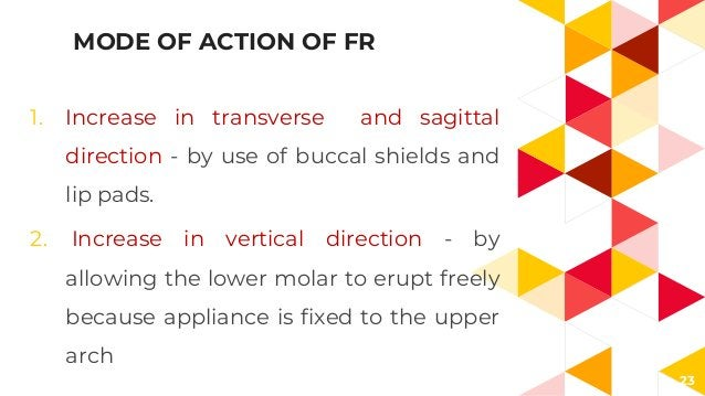 23 MODE OF ACTION OF FR 1. Increase in transverse and sagittal direction - by use of buccal shields and lip pads. 2. Incre...