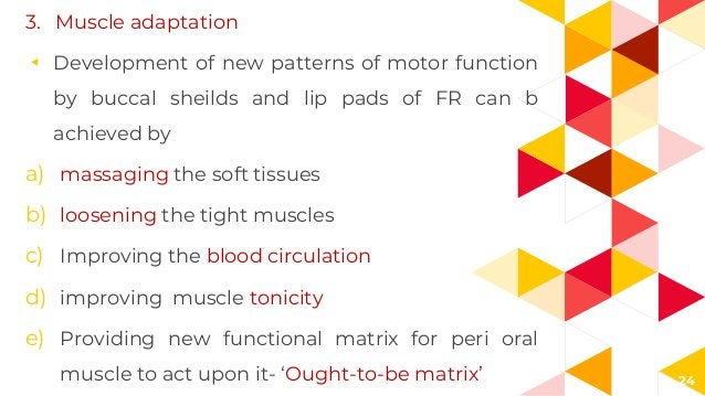 24 3. Muscle adaptation ◂ Development of new patterns of motor function by buccal sheilds and lip pads of FR can b achieve...
