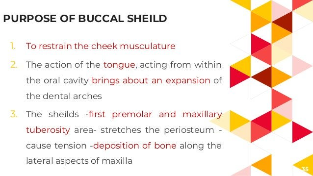 35 PURPOSE OF BUCCAL SHEILD 1. To restrain the cheek musculature 2. The action of the tongue, acting from within the oral ...