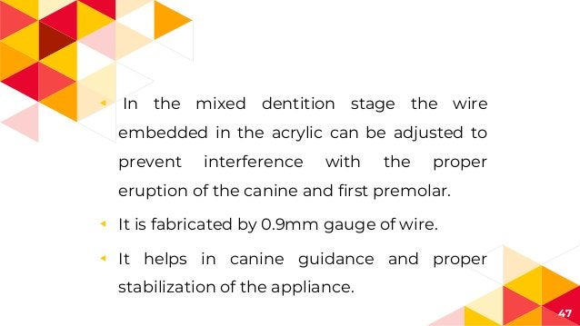 ◂ In the mixed dentition stage the wire embedded in the acrylic can be adjusted to prevent interference with the proper er...
