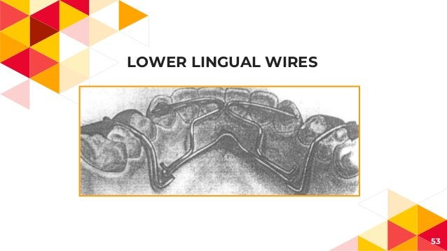 LOWER LINGUAL WIRES 53