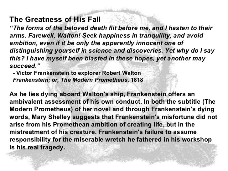 frankensteins innocence essay Sample essay outlines sample essay outlines topic #1  e frankenstein becomes as miserable as his creature: 1 his loved ones are dead 2 he feels responsible and guilty over their deaths  belief in justine's innocence c self-sacrifice for victor 4 robert walton a desire for close, loving friend 5 henry clerval a close, loyal.