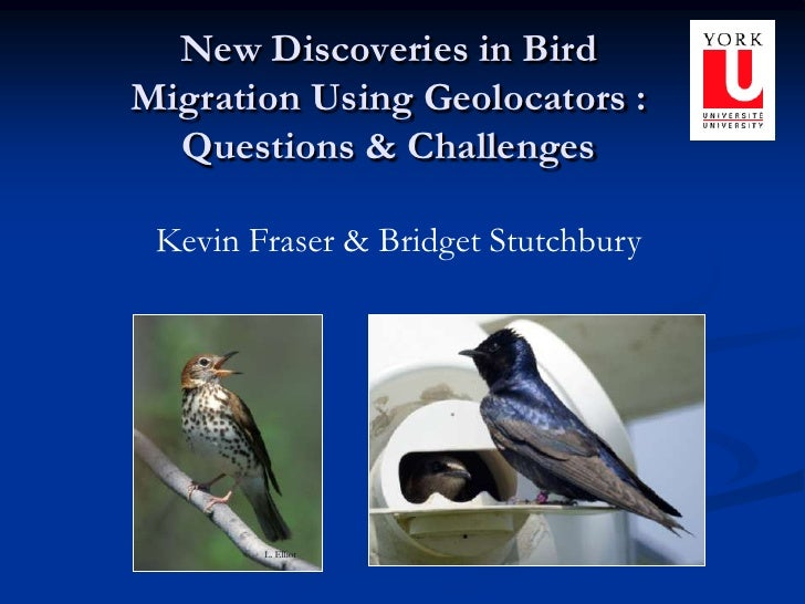 L. Elliot<br />New Discoveries in Bird Migration Using Geolocators : Questions & Challenges<br />Kevin Fraser & Bridget St...