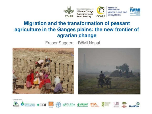 Migration and the transformation of peasant agriculture in the Ganges plains: the new frontier of agrarian change Fraser S...