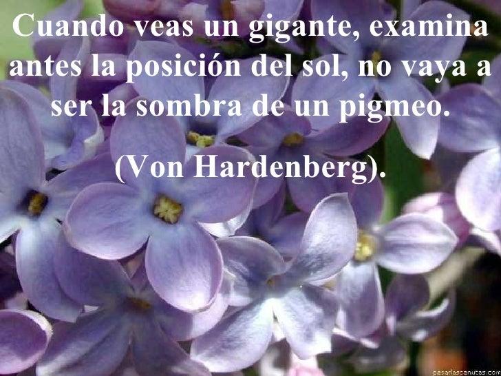 Cuando veas un gigante, examina antes la posición del sol, no vaya a ser la sombra de un pigmeo. (Von Hardenberg).