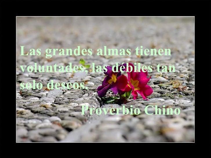 Las grandes almas tienen voluntades, las débiles tan solo deseos. Proverbio Chino