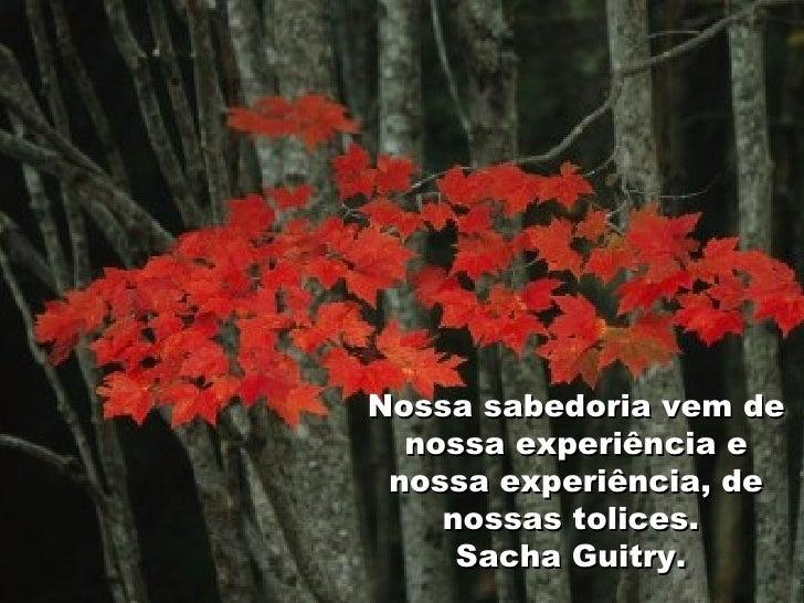 Nossa sabedoria vem de nossa experiência e nossa experiência, de nossas tolices.  Sacha Guitry.