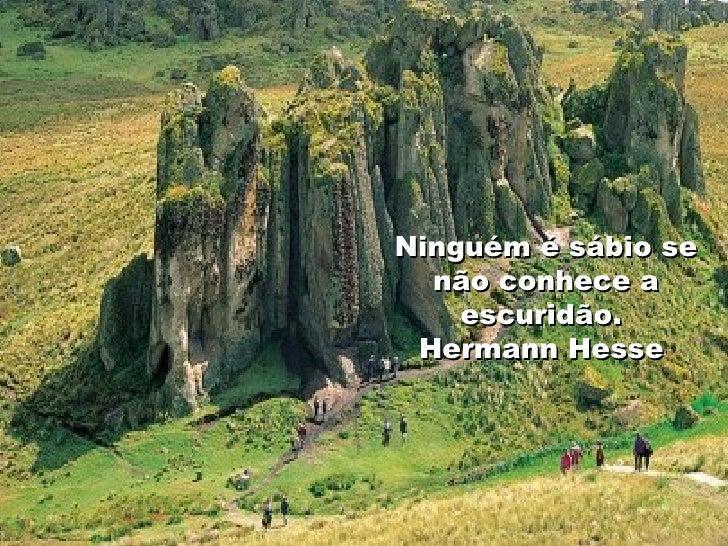 Ninguém é sábio se não conhece a escuridão.  Hermann Hesse