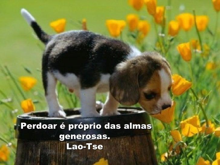 . Perdoar é próprio das almas generosas.  Lao-Tse