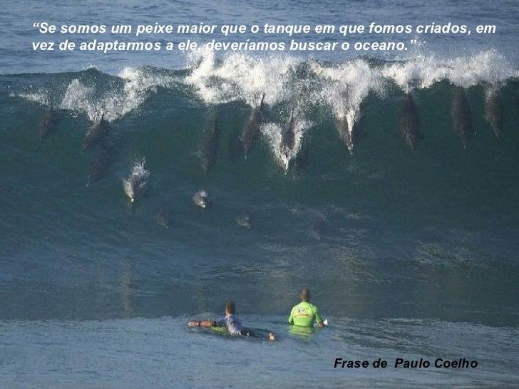 """"""" Se somos um peixe maior que o tanque em que fomos criados, em vez de adaptarmos a ele, deveríamos buscar o oceano.""""  Fra..."""