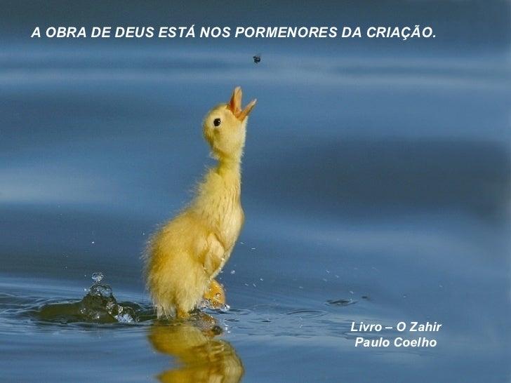 Frases De Paulo Coelho: Frases Paulo Coelho
