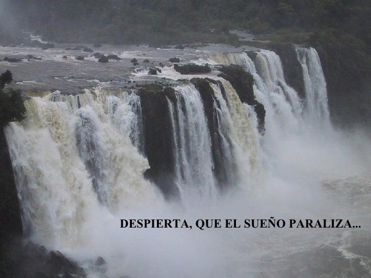 DESPIERTA, QUE EL SUEÑO PARALIZA...