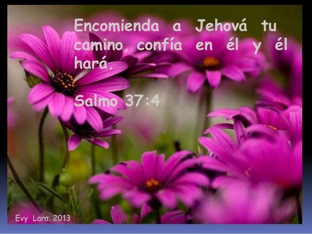 Frases Biblicas Evy Lara 2013