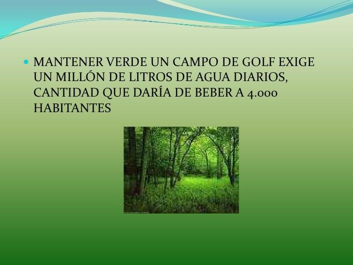 Frases Celebres Del Medio Ambiente
