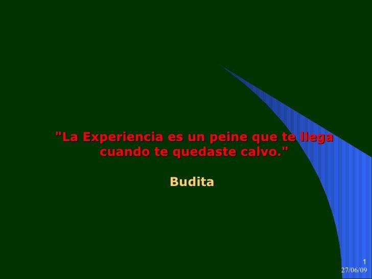 """""""La Experiencia es un peine que te llega cuando te quedaste calvo."""" Budita"""