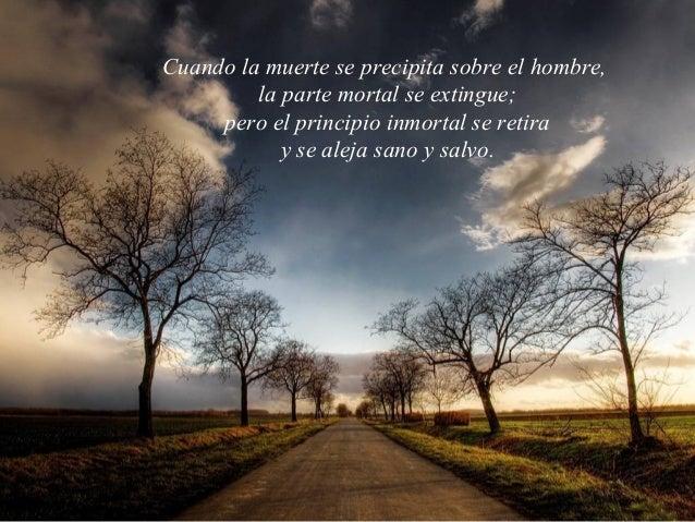 Cuando la muerte se precipita sobre el hombre,         la parte mortal se extingue;     pero el principio inmortal se reti...