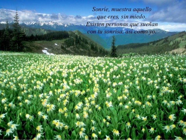 Sonríe, muestra aquello    que eres, sin miedo.Existen personas que sueñancon tu sonrisa, así como yo.