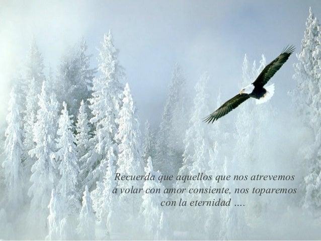 Recuerda que aquellos que nos atrevemosa volar con amor consiente, nos toparemos           con la eternidad ….