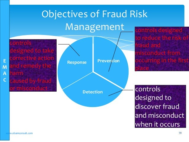 Financial Reporting and Audit (FRAud) Group