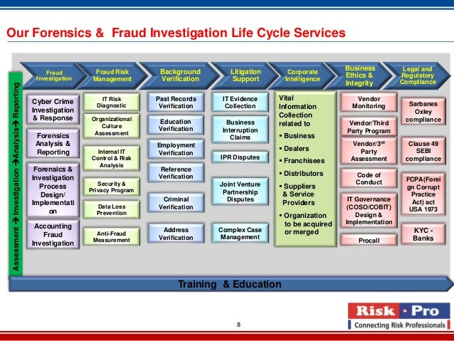 Single fraud investigation service 2013