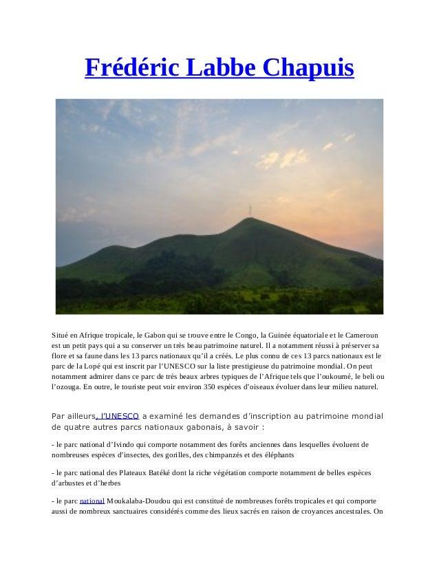 Frédéric Labbe Chapuis Situé en Afrique tropicale, le Gabon qui se trouve entre le Congo, la Guinée équatoriale et le Came...