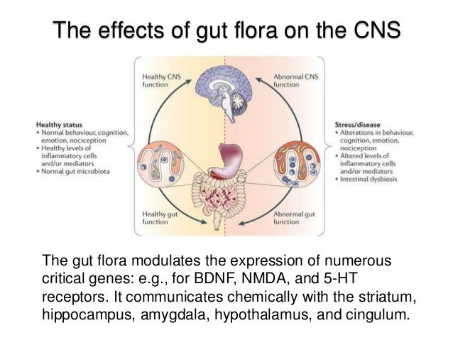 The Microbiota In Mental Health