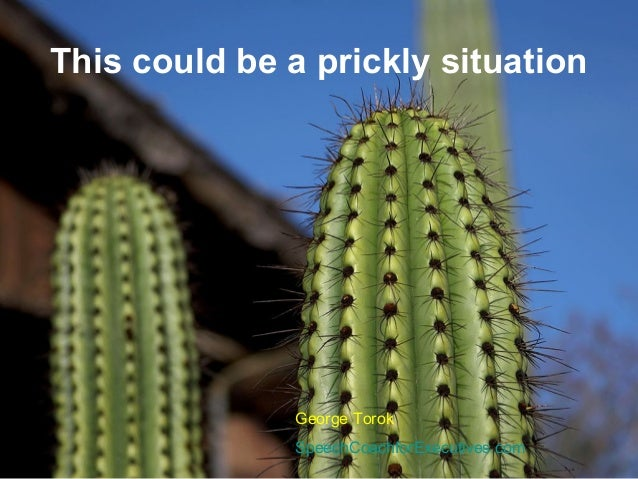 This could be a prickly situationGeorge TorokSpeechCoachforExecutives.com