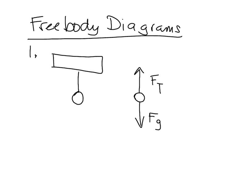 Freebody Diagrams