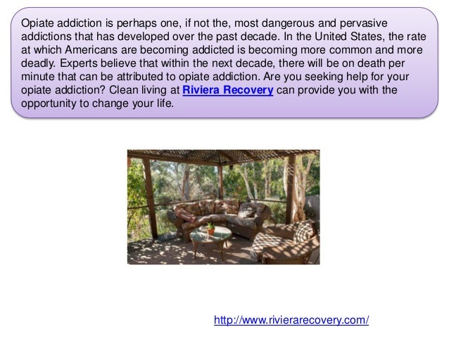 Freedom from Your Opiate Addiction  Slide 2