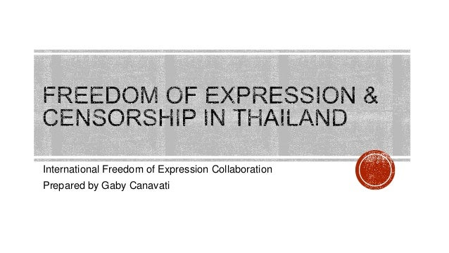 International Freedom of Expression Collaboration Prepared by Gaby Canavati