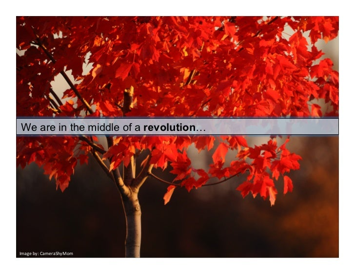 We     are in the middle of a revolution…Imageby:CameraShyMom